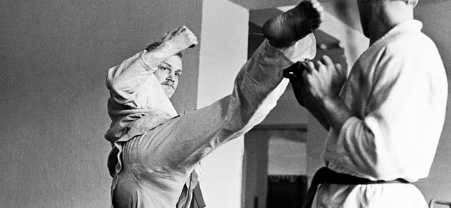 Socialismo reale e arti marziali. Una storia sovietica
